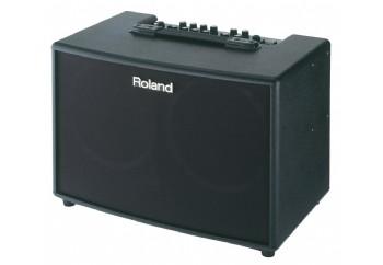 Roland AC90 Acoustic Chorus Guitar Amplifier - Akustik Gitar Amfisi