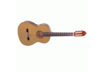 Valencia CG30R 4/4 Yetişkinler İçin - Klasik Gitar