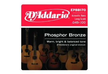 D'Addario EPBB170 Phosphor Bronze Acoustic Bass, Long Scale, 45-100 Takım Tel