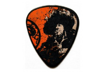 Perris Pirates of the Caribbean Guitar Pick LP-PC05 - 1 Adet