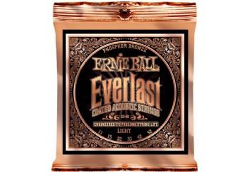 Ernie Ball 2548 Everlast Phosphor Takım Tel - Akustik Gitar Teli 011-052