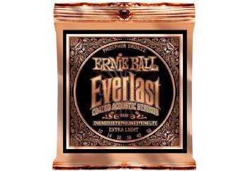 Ernie Ball 2550 Everlast Phosphor Takım Tel - Akustik Gitar Teli 010-050