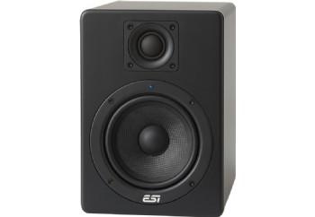 ESI Audio Aktiv 05 - Aktif Stüdyo Referans Monitör (Çift)