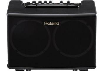 Roland AC-40 - Akustik Gitar Amfisi