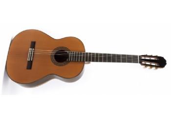 Raimundo Model 129 cocobolo - Klasik Gitar