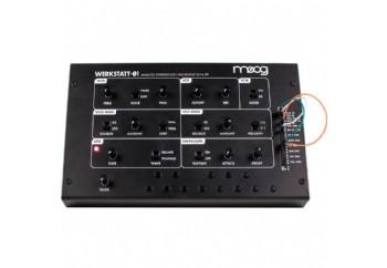 Moog Werkstatt - Analog Synthesizer