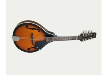 Aria AM-20 - Mandolin