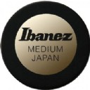 Ibanez Round Shape Pick