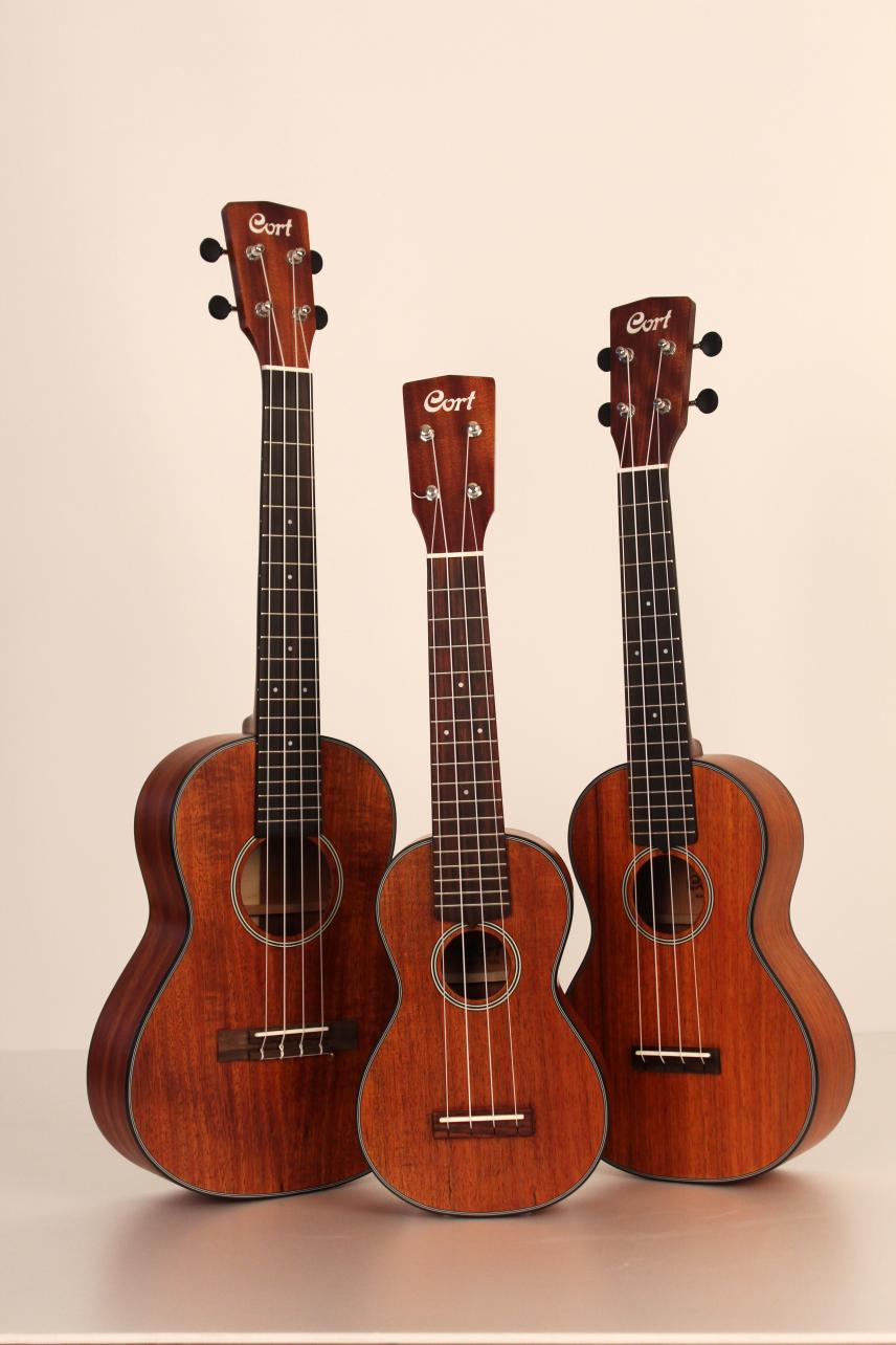 cort uke bwc concert ukulele concert ukulele mydukkan