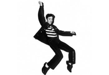 Aquarius Elvis Jailhouse - Magnet