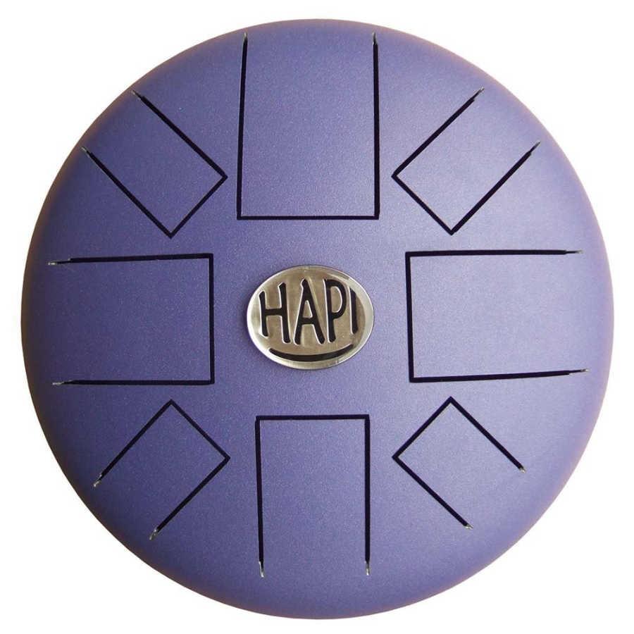HAPI Regular D Minor Steel Drum