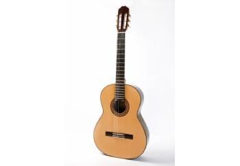 Raimundo Model 140 Sedir ( Cedar ) - Klasik Gitar