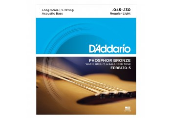 D'Addario EPBB170-5 ,Phosphor Bronze 5-String Acoustic Bass Strings