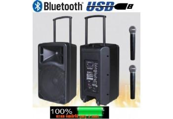 D-Sound Max-10PA
