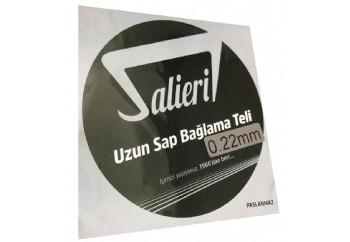 Salieri 0.22 mm Paslanmaz Takım Tel - Uzun Sap Bağlama Teli 022