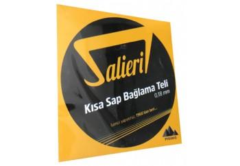 Salieri 0.18 mm Pyramid Takım Tel - Kısa Sap Bağlama Teli 018