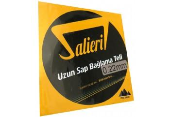 Salieri 0.22 mm Pyramid Takım Tel - Uzun Sap Bağlama Teli 022