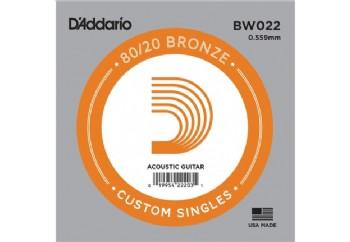D'Addario Acoustic Guitar 80/20 Bronze Single