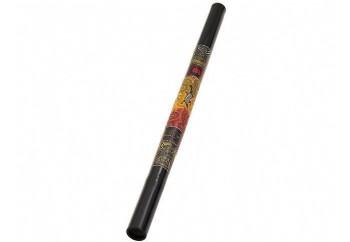 Meinl DDG1-R Didgeridoo - Fırsat Reyonu BK - Siyah - Didgeridoo 47