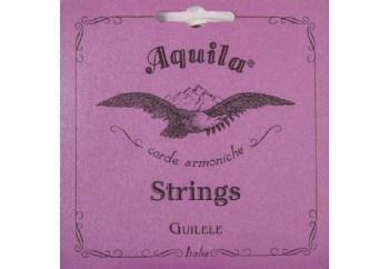 Aquila A tuning 96C Takım Tel - Guilele Teli