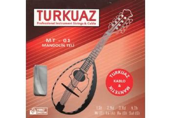 Turkuaz MT-01 Takım Tel - Mandolin Teli