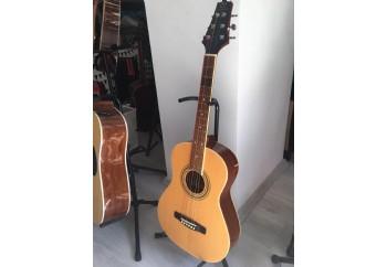 Samick DS-100SM - Fırsat Reyonu 2 Natural - Akustik Gitar