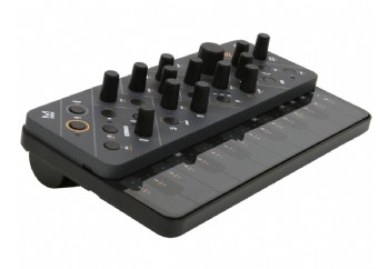Modal Electronics Skulpt - Virtual Analog Synthesizer