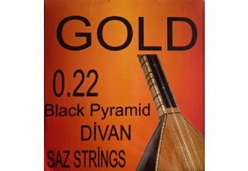 Gold GD22BK Takım Tel - Divan Saz Teli Siyah 022