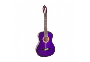 Valencia VC102T (8-10 yaş grubu) PPS - 1/2 Klasik Gitar Sap Çelikli