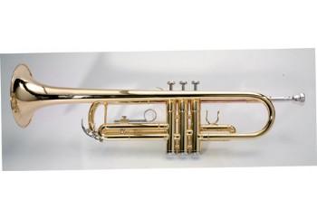 Ashton TR10 - Bb Trompet