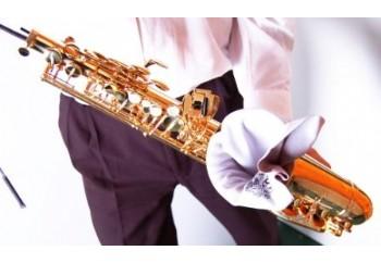 BG FRance A30 Alto Saxophone Sax Body Swab