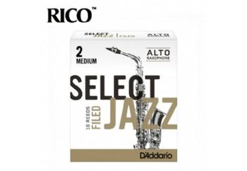 D'addario Select Jazz Alto Saxophone Filed Reeds 2M - Medium  - Alto Saksofon Kamışı