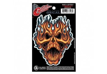Planet Waves Flame Whip Skull GT77013  - Gitar Sticker